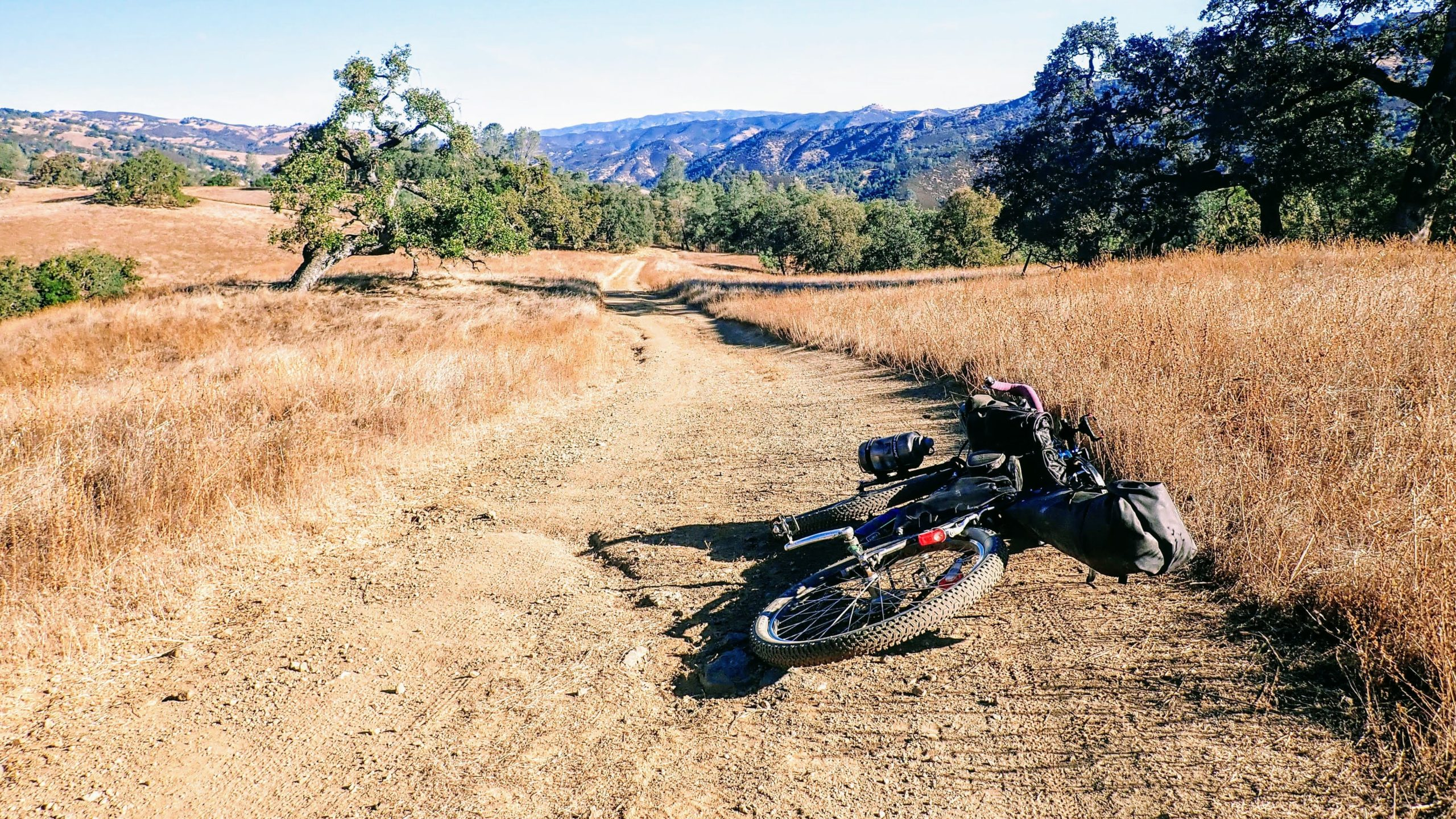 Bikepacking on fire road in Henry Coe State Park